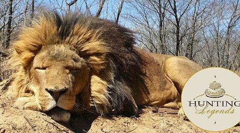 Hunting in Africa (5).jpg