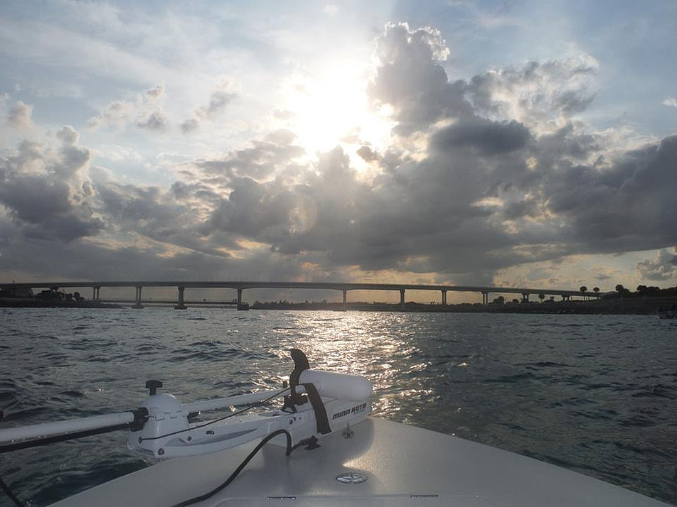 sebastian inlet charters inshore offshore rentals more