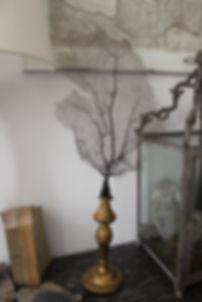 grande gorgone noire ancienne montée sur un socle en bois sculpté XVIIIe, cabinet de curiosité