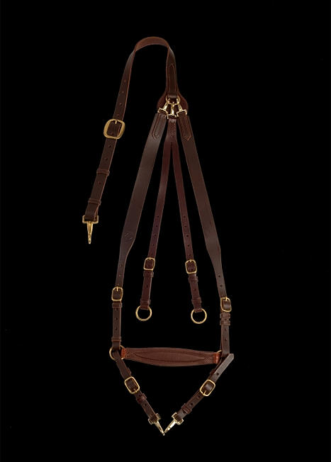 Collier chasse cuir