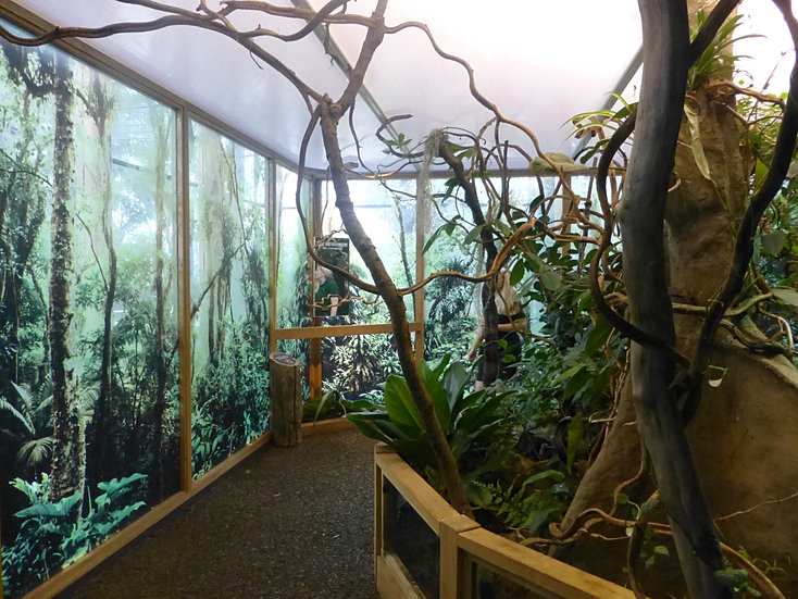 Mk40 architects spiders zsl london zoo for Garden room london zoo