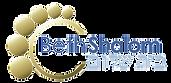 CBS Transparent Logo.png