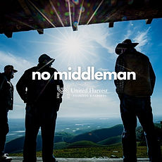 Concept-No-Middleman-Rook-C-SpotRun.jpg