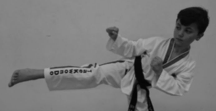 TaeKwonDo Academy - Keiran Prior - TaekwonDo Academy Martial Arts & Sef Defence School
