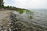 Tabhgá de Galilea