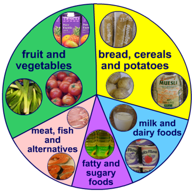 THE 7 DIFFERENT FOOD GROUPS | pr-blog