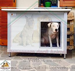 Verbox box per cani cucce coibentate box per animali a for Cucce in coibentato