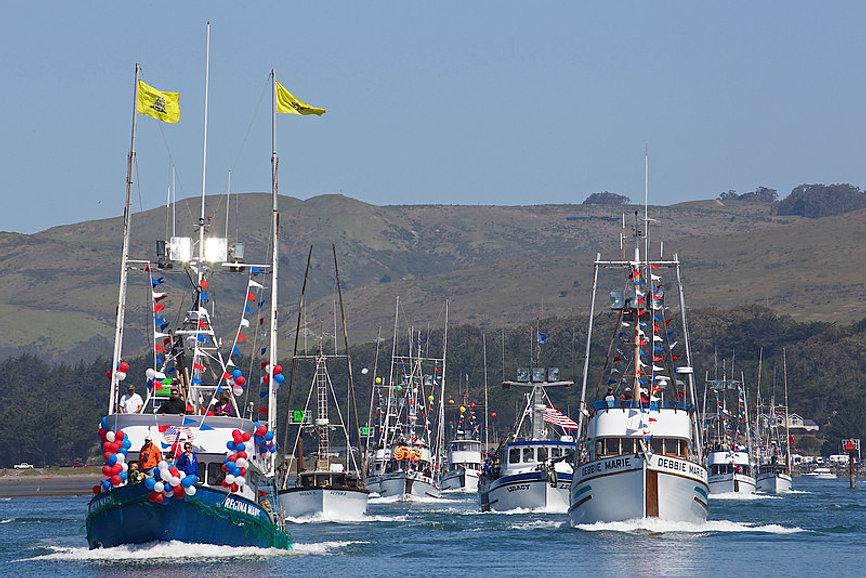 1 bodega bay area website official bodega bay site for Bodega bay fishing reports