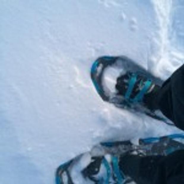 tara snowshoes