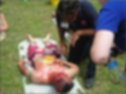 casualty2.png