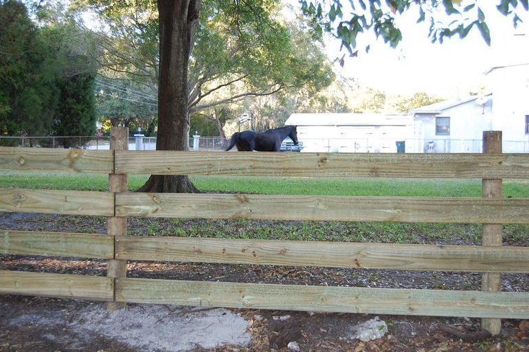 12-16-10 wood 040postrail