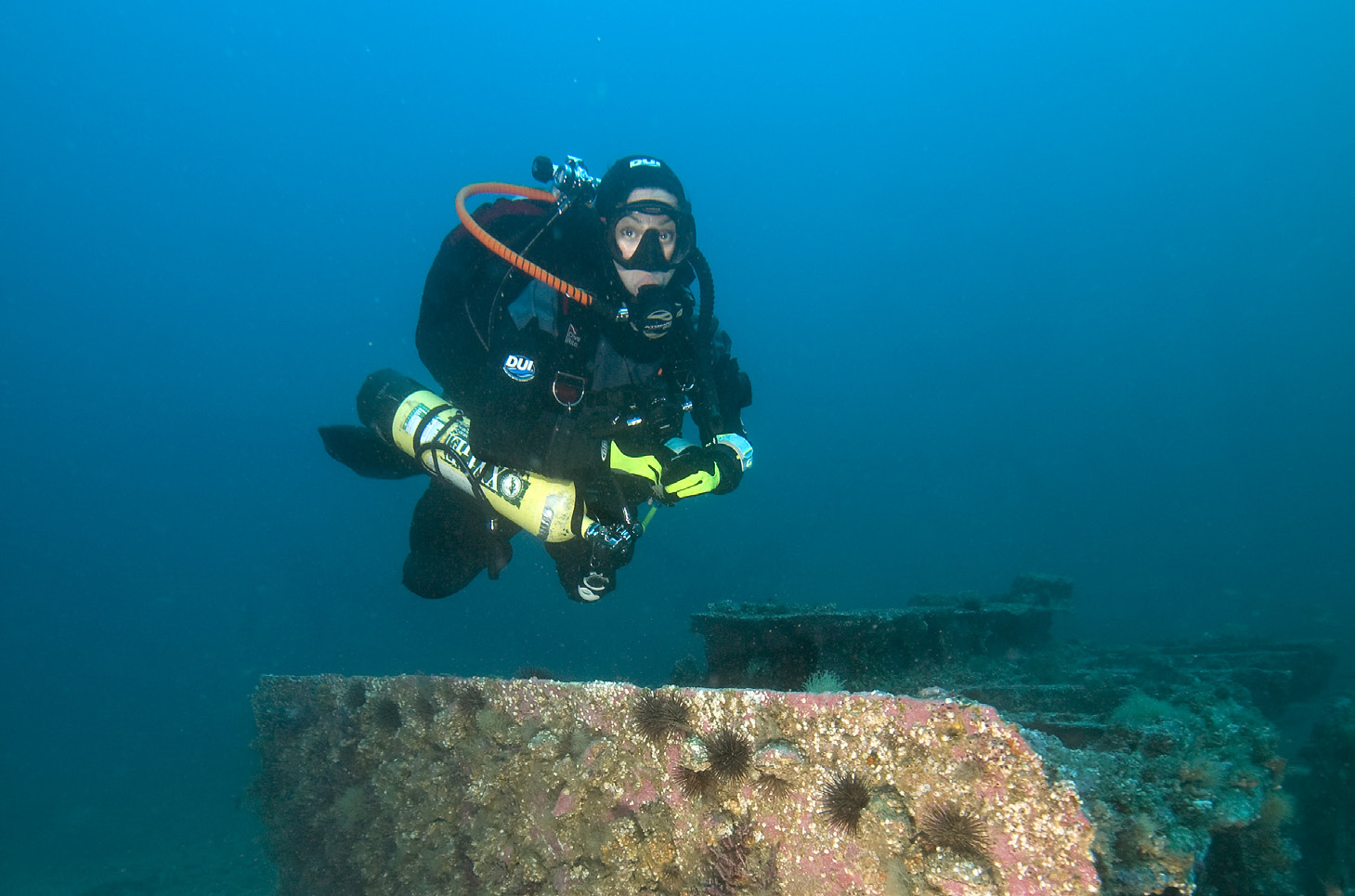 North carolina diving into history scuba h2o adventure magazine 1betcityfo Choice Image