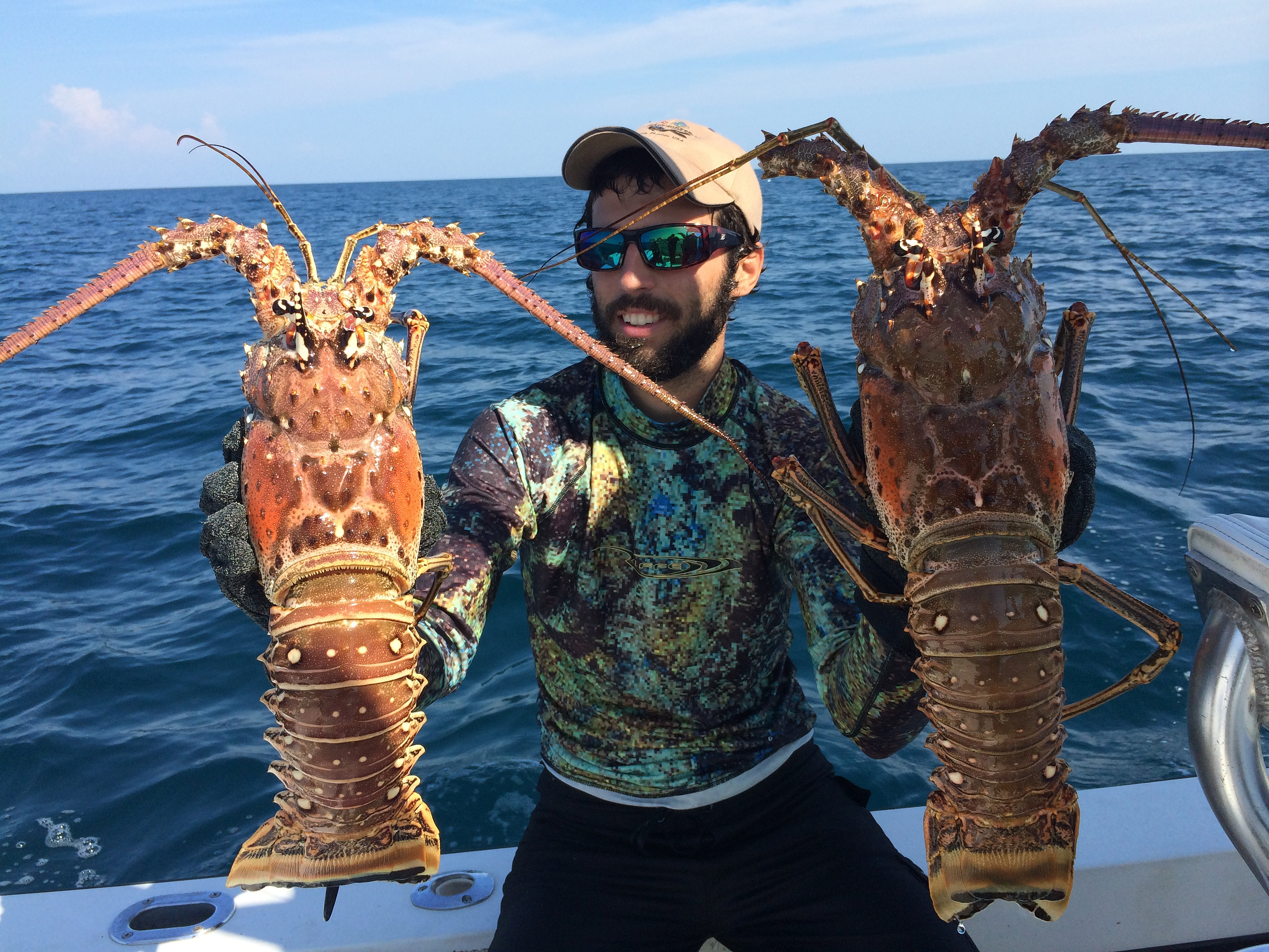 Naples Florida Spearfishing   Lobster caught diving Naples Florida