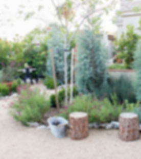 California native garden, Drought tolerant, swales