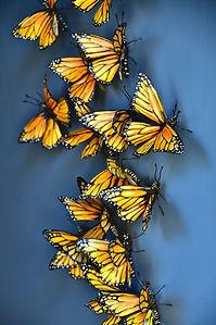 Migration-6-Michele-Vitaloni.jpg