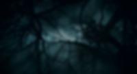 7260_14_screenshot.png
