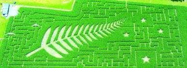 flag_maze[1]