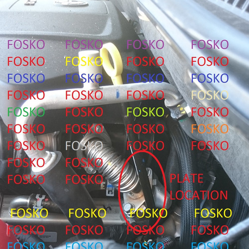 Fosko Enterprises Holden Egr Products