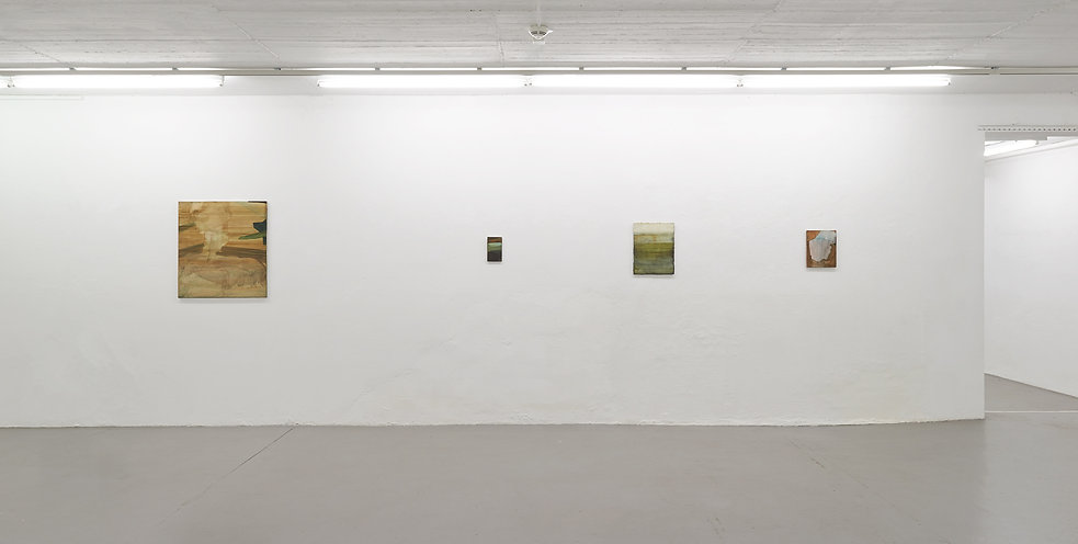 Markus Saile, Kunstverein Springhornhof