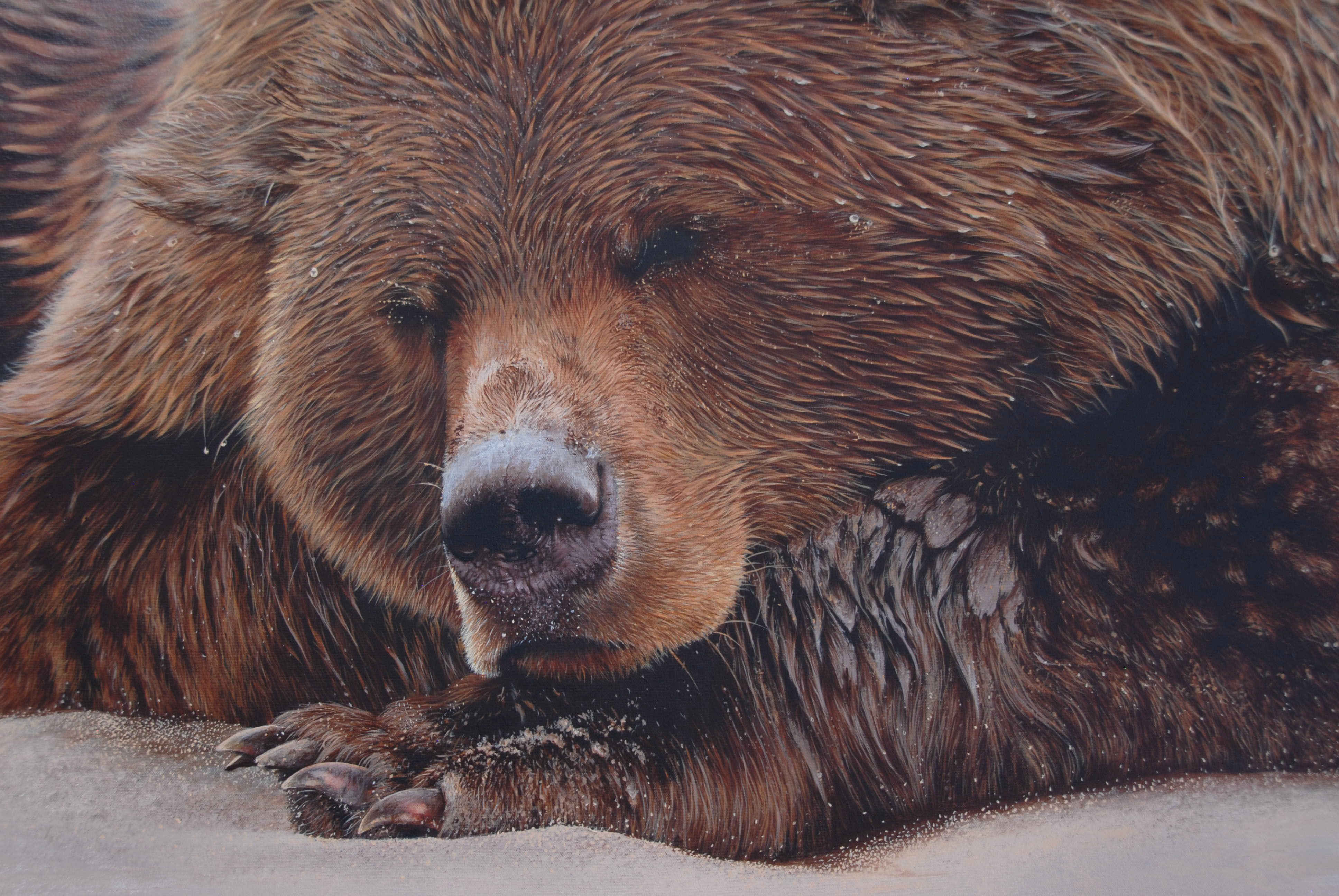 how to paint a grizzly bear without loosing your mind carlagrace