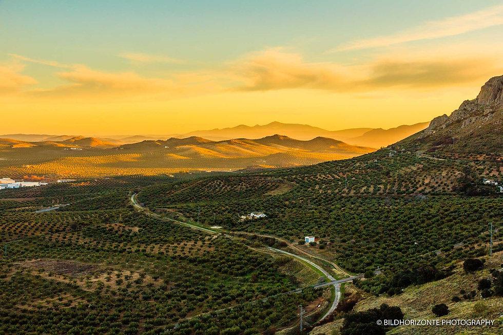 Andalusiennet.de-Via-Verde-del-aceite-Sierra-Subbetica.jpg