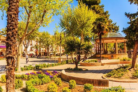 Andalusisiennet.de-gefuehrte-rundreisen-baeza