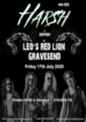 Leos Red Lion gig - Copy.jpg