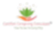 Certified Caregiving Consultant - Edit