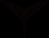 AZSTOKE_Black_logo.png