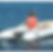 delphinus da 385 126 inflatable sport bo