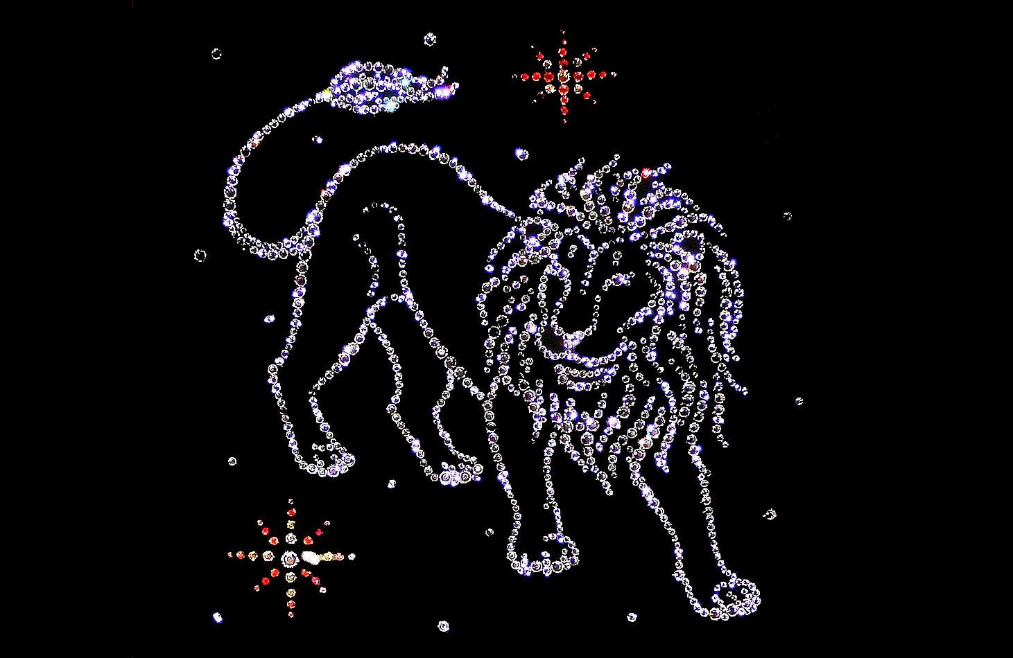 Знак зодиака Лев : мужчина