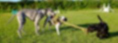 Snapshots (1 of 1)-18.jpg