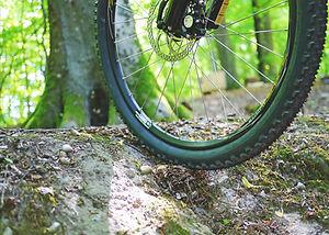 mountain-bike-841850_1920.jpg