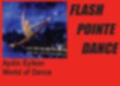 Flash Pointe Dance.jpg