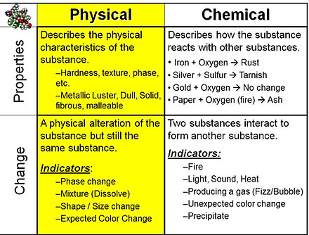 lab 8 chemical and physical Exercise 8: chemical and physical processes of digestion: activity 2: exploring  amylase substrate specificity lab reportpre-lab quiz results.