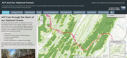 ACP-and-Our-National-Forests_500.jpg