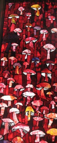mushroom contest