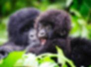 itin-rwanda-1.jpg