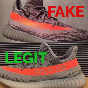 Yeezy Boost 350 V2 Beluga Review On Foot!