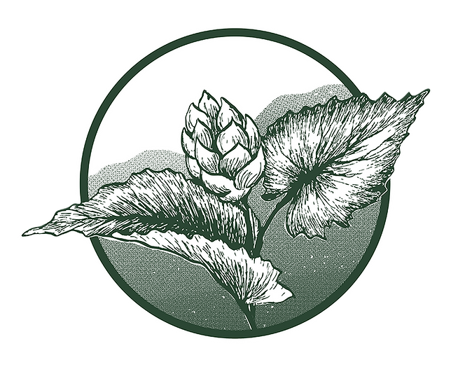 Logo 4 Icon.png