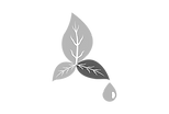 environment-3420054_960_720_edited.png