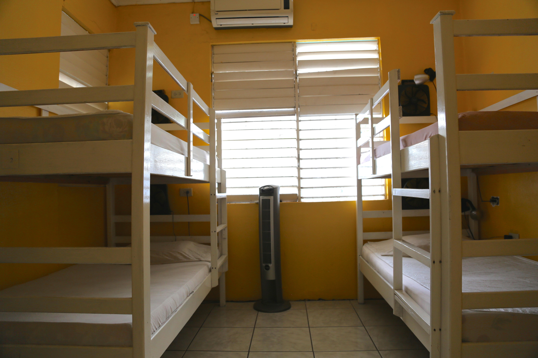 standard 4 bed dorm
