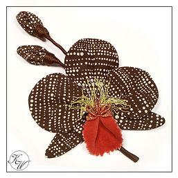Orchidee braun.jpg