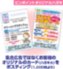 ピンポイントオリジナルハガキ 集合広告でなくお客様のオリジナルのカード(ハガキ大)をポスティング(1000枚より)