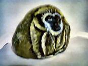 monkey02.jpg