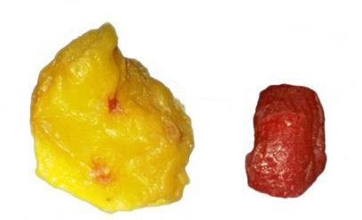 pedaços de gordura e músculo