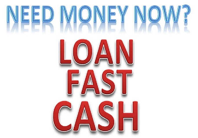 Ace cash advance tampa image 1