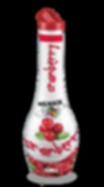 Polpa Concentrata Cranberry.png