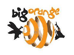 Big Orange logo.jfif.jpeg