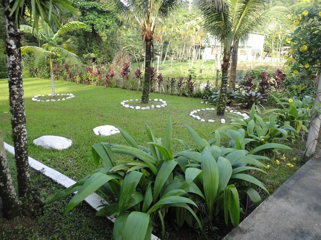 Dependência Química Alcoolismo e Drogas  Jardim  Pomar e Horta